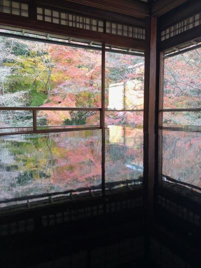 2020年 紅葉の京都 3日目