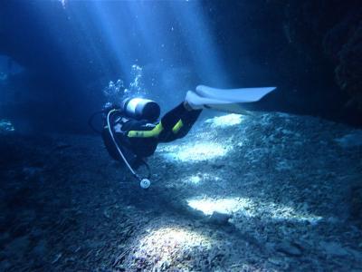 夏!沖縄 座間味島「ニタ洞窟」でダイビングをしました。