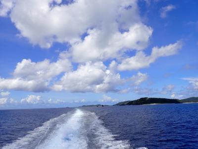 夏!沖縄 座間味島から渡嘉敷島へ移動しました。