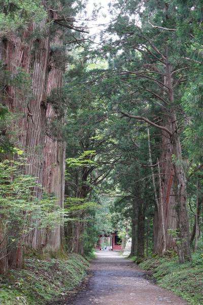 20210719-1 戸隠 奥社まで、杉並木を眺めたり登ってお参りしたり