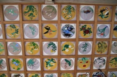 本宮山円城寺提婆宮で素晴らしい天井画を観た後道の駅かもがわ円城で買い物して最後は仏法僧観察