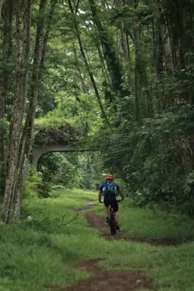 Green Corridor マレー鉄道廃線跡を北上(Bukit Panjang → Kranji)