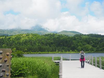 ANA特典航空券で行くさいはての地、稚内・憧れの利尻・礼文へ③利尻島定期観光バス