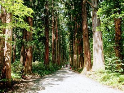 戸隠鏡池から戸隠神社奥社までハイキング