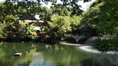 心の安らぎ散歩(2021年7月杉並区☆善福寺公園から武蔵野市☆井の頭恩賜公園をスマホでパチリ♪)