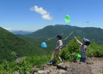 湯の丸高原の烏帽子岳に孫登山でトンボと遊ぶ