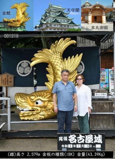 大平洋フェリー創立50周年3船乗り比べツアーと名古屋の旅(12)56年振りの名古屋城で本丸御殿を見学して濠の鹿を見て安心する。
