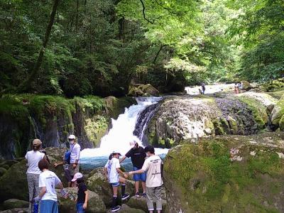 菊地渓谷で涼み、平山温泉の美肌湯を楽しむ旅~鹿央古代の森公園の古代蓮~