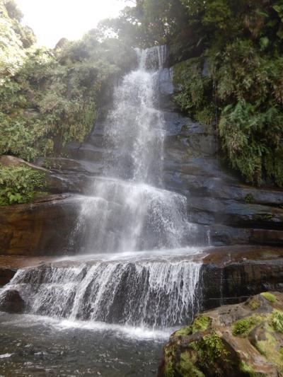 西表島旅行②サガリバナとナーラの滝とイダの浜