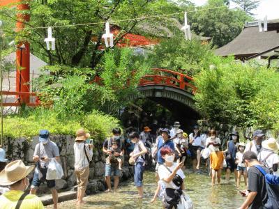 夏の京都 下鴨神社のみたらし祭