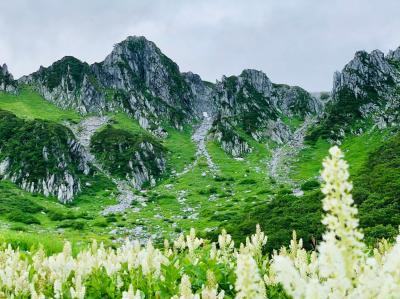 【二泊三日】標高2,612メートル!絶景の千畳敷カールと八ヶ岳で過ごす夏休み