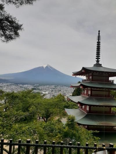 富士吉田五重塔と富士山(3)新倉山忠霊五重塔。