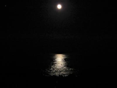 福島県いわき市小名浜ホテル花天「月へと照らす海の道」その2