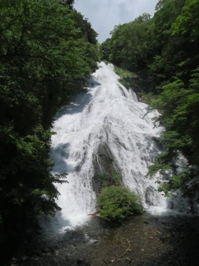 日光・戦場ヶ原の自然研究路(赤沼・湯滝間)を歩きました