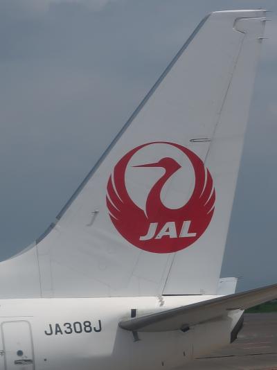 羽田/東京国際空港 鹿児島行 日本航空-JAL649便 搭乗前 ☆札幌の空弁‐昼食にして