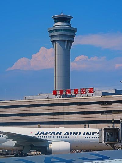 鹿児島行 日本航空-JAL649便/48K 空席7割? ☆離陸13:35-八景島/江の島も確認