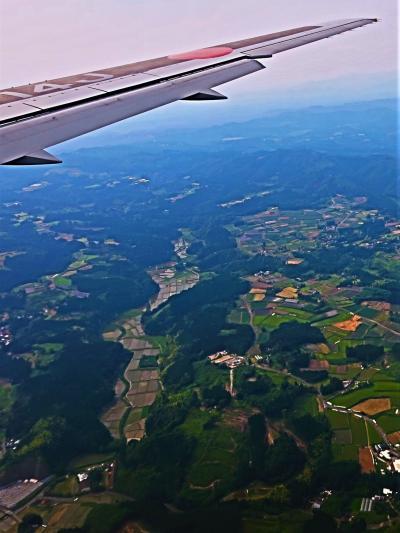 鹿児島空港へ 日本航空-JAL649便 羽田空港~105分 ☆足湯-おやっとさぁ-バス停前に