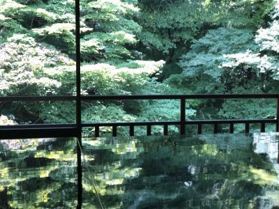緑が多く 川のせせらぎを聞きながら 京都の涼しさを 味わう