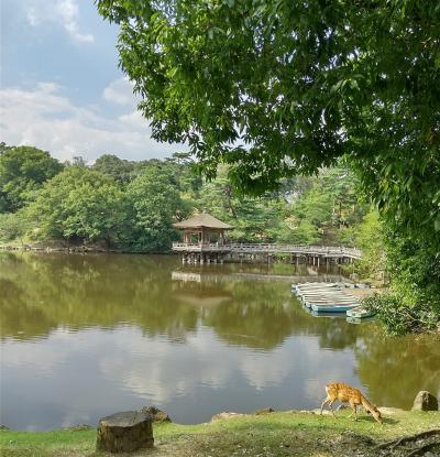 2021夏 奈良の旅