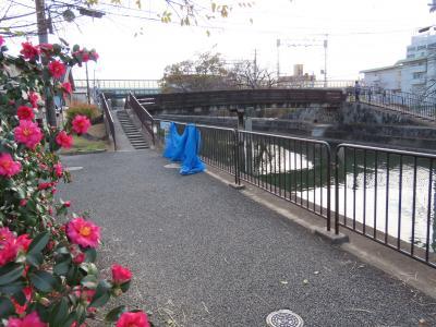 京都 琵琶湖疏水 鴨川運河5(Kamogawa Canal, Biwako Canal, Kyoto, JP)
