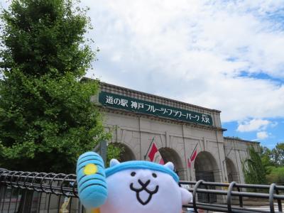 神戸フル-ツフラワーパークに行ってきたにゃ!(パターゴルフ、神戸おとぎの国)