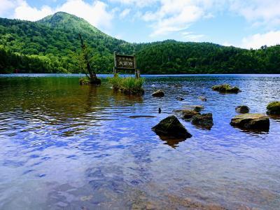 青い池に浮島の高層湿原「志賀高原池巡りハイキング」