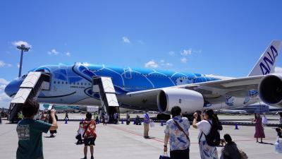 21年フライングホヌ搭乗記 ANA FLYING HONU チャーターフライト