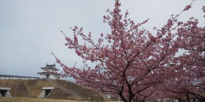 宇都宮駅周辺を徒歩で楽しむ旅2021年3月パート2