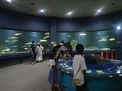 北海道ツーリング 12日 倶知安からおたる水族館を見学して小樽へ行きました。