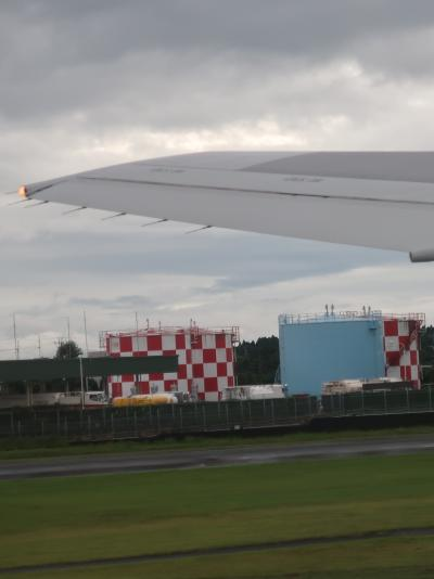 鹿児島空港 日本航空-JAL650便 16:20発 羽田/東京行 ☆離陸-ゴルフ場- 霧島連山も