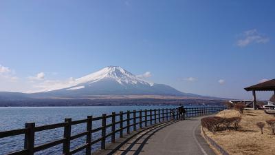 富士山の旅 四日目後半【ホテルマイステイズ富士山 展望温泉】