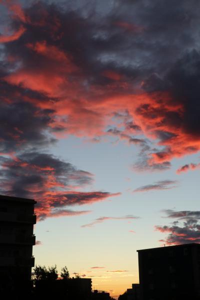小さな旅 夜明けのわが街小手指2021年8月 Daybreak of my town Kotesashi