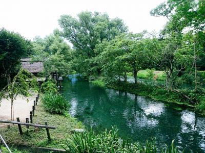 日本の名水100選 白馬姫川源流と安曇野の湧水巡り