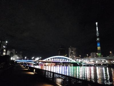 オリンピックカラーの橋 TOKYO2020②