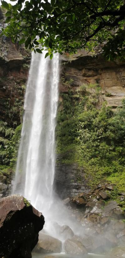 西表島4日目何度行っても大満足ピナイサーラの滝 8月3日