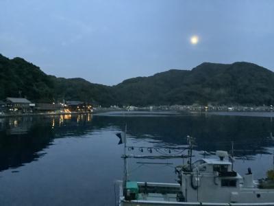京都どうでしよ!  伊根の舟~屋に降~る雪も~編