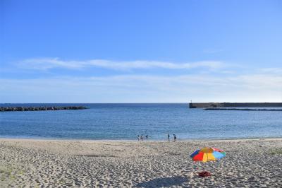 屋久島へ行ってきました!その5 魅力いっぱいの屋久島でたくさんの元気をいただきました。