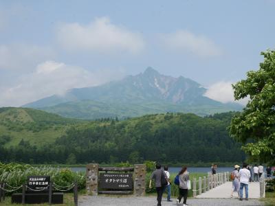 北海道離島の旅 その2 定期観光バスで利尻島一周!あらゆる角度から利尻山を見てみよう