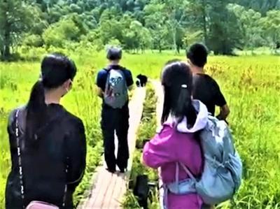 尾瀬観光&ゴルフ旅行~~♪♪ Ⅱ(何とクマの親子に出会った!!尾瀬散策~~♪♪)