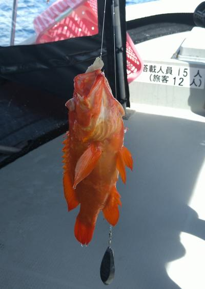 3泊4日のファンダイブin石垣島 ショッピングにグルメ♪海釣りにも挑戦だ! 4日目最終日 Part4