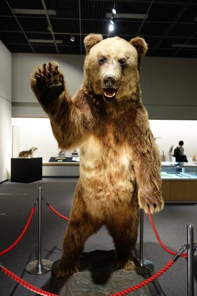 20210816-2 旭川 旭川市博物館は、はじめての訪問だったりする…