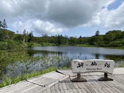 2021年8月 北海道9日間(7)ニセコ神仙沼ハイキング ひらふをウロウロ