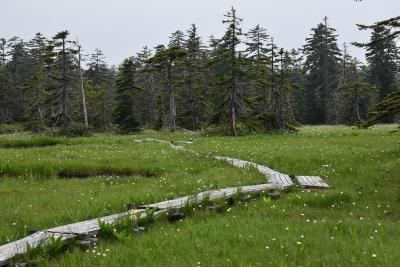 美しい浮島湿原2021夏~点在する沼と水生・湿性・高山植物との出会い~(北海道)