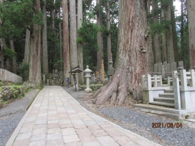 紀の国訪問記(10)高野山奥の院参道にて