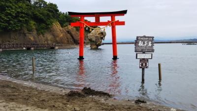 道南周辺+JALで函館から雨の羽田へ☆