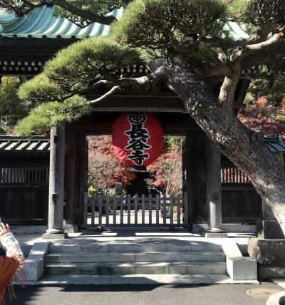 年末の鎌倉~江ノ電で寺社巡り