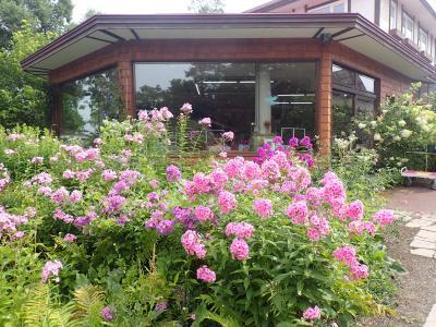 北海道ツーリング 17日目 紫竹ガーデン・十勝ヌップクガーデンへ行きました。