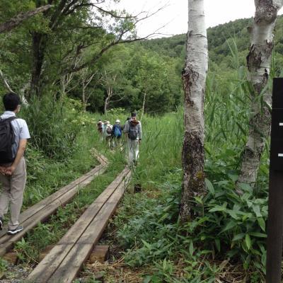 豪雨続きでヤキモキした北志賀高原の旅 2)  4km-2時間の自然探勝コースをハイキング