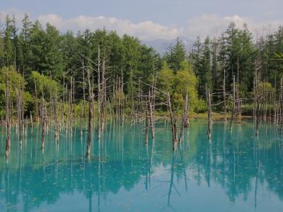 北海道ツーリング 23日目 吹上露天の湯から白金青い池へ行きました。