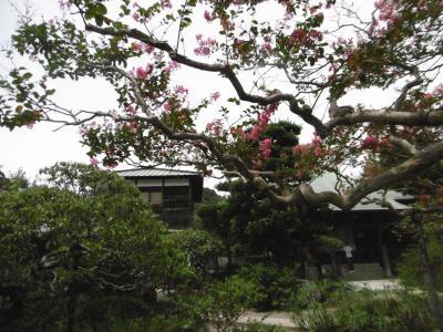 鎌倉 極楽寺方面から稲村ケ崎まで歩きました ~エピソードが盛り沢山です~
